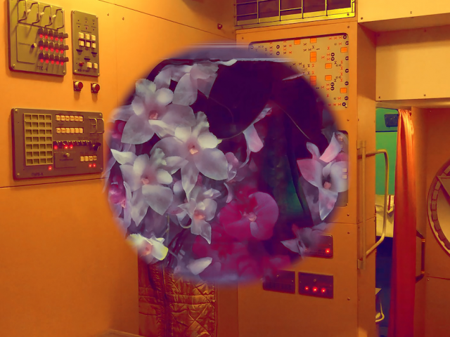 Andréa Stanislav, Zero Gravity — Nostalgia for Earth.  2020 Video stillI. Image courtesy: the artist