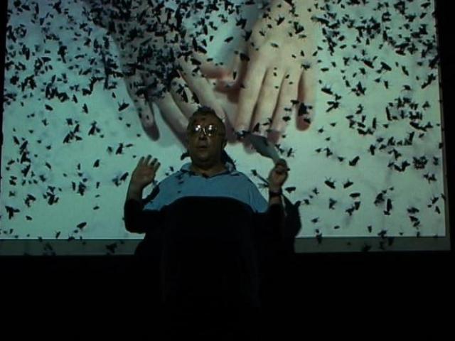"Ruti Sela, ""El Parabero"", 2010, video"